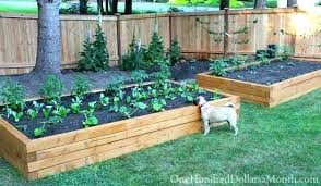 how to build a vegetable garden box. Vegetables Boxes Garden Raised Box How To Build Beds For Growing One . A Vegetable