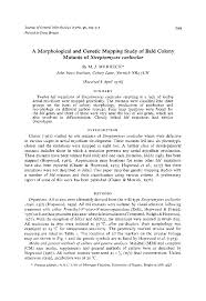microbiology society journals a morphological and genetic preview thumbnail magnify