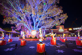 Disney Magical Holiday Lights - Orange County Zest