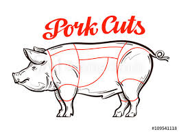 Hog Meat Cuts Chart Vector Pork Pig Chart Meat Cuts Butcher Shop Buy This