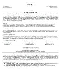 Business Resume Example Inspiration It Business Analyst Resume Samples With Objective Business Analyst