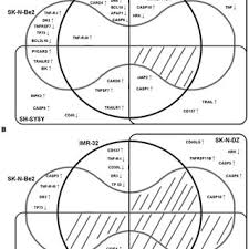 Edwards Venn Diagram Edwards Venn Diagrams Showing The Genes Overexpressed At Least 2