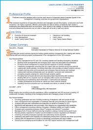 Template Example Of A Good Cv Perfect Template Uk Executive