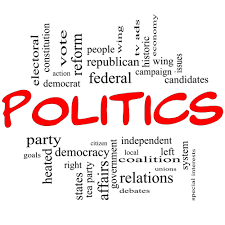essay on political system