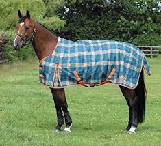 Horse Turnout Blanket Size Chart Amazon Com Jeffers Exclusive Saxon 1200d Standard Neck