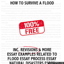 how to survive a flood essay how to survive a flood