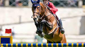 Olympic equestrian ...