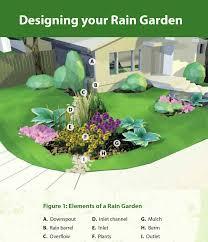 Berm Garden Designs Rain Gardens A How To Guide For A Healthy Yard Gardening
