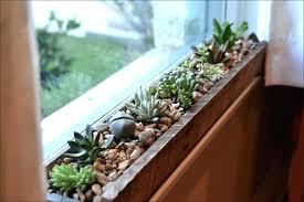indoor window garden. window sill ideas indoor garden plant shelf awesome kitchen herb