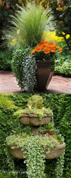 Small Picture 112 best Container Gardening images on Pinterest Pots Flowers