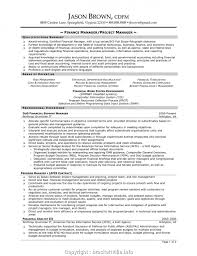 Creative Project Manager Cv Template Professional Construction