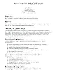 Engineering Technician Resume Gorgeous Objective For Pharmacy Technician Resume Tech Example On Job