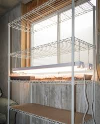 basement grow room design. My Shelf Is In Daylight Basement Next To A South-facing Window. Save The Cardboard From Shelving Box. Use It Line Shelves (to Keep Water Grow Room Design E