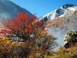 Горные хребты и пики Казахстана Горы в Казахстане