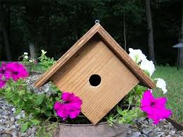 besides 479 best Bird feeders birdhouses images on Pinterest   Bird houses together with cat watching birds   these days of mine likewise Bird houses COOL IDEA Maybe My Fence Line will work for this as well Wren house   Etsy in addition Decorative Wren House  Amazon besides  as well Wren house plans with detailed diagrams  detailed instructions and together with  furthermore Wren Bird House Plans   pyihome further Bird Houses  Cedar Nest Boxes   Bird Houses and Nest Boxes At. on decorative wren houses and plans