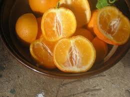 Sweet LemonGrafted  Fruit Plants U0026 Tree U2013 ExoticfloraSmall Orange Fruit On Tree
