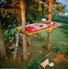 basic tree house pictures. Basic Tree House Plans New For Two Trees Washington Treehouse Has Skatepark Pictures L