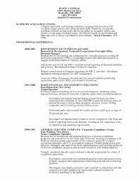 Resume Amazing Auditing Audit Officer Cv Trendy Auditor