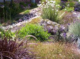 Small Picture Xeriscape Personal Touch Landscaping Colorado Springs CO