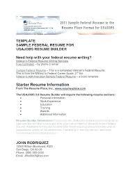 Best Resume Builder Cool Federal Resume Builder Templates Best Resume Templates Federal