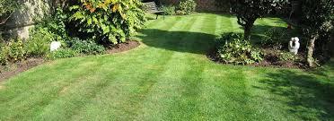 lawn care austin tx outdoor lawn