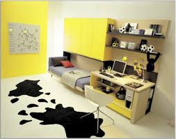 Paint Colors For Boys Bedroom T Tiny Tween Boys Bedroom Ideas Pictures Teen Boy Excerpt Sports