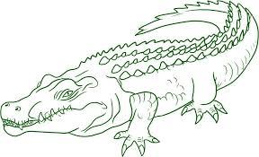 Crocodile Coloring Pages Coloring Pages Crocodile 13 28341 Unicorn