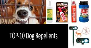 best dog repellents photo