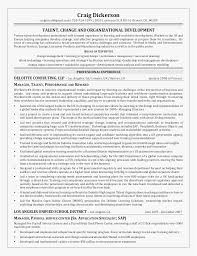 Project Manager Resume Templates Simple Sample Program Manager