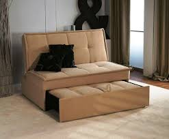 pull out sofa bed. Pull Out Sofa Beds Bed