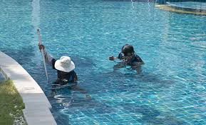 Swimming Pool Service  Home DesignSwimming Pools Service