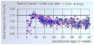 Conceiving Baby Gender