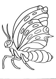 Disegni Animali Da Colorarefarfalladisegno Farfalla Da Colorare