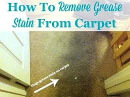 pet stains on wool carpet pet stain odor removal how
