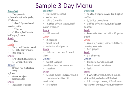 Sample Food Journal Template Best Photos Of Sample Food Diary Log Food Diary Log