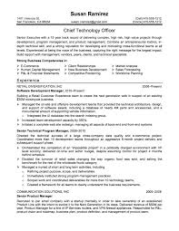 Resume Example Great 10 Of Correct Resume Profile Examples chief technology  officer .