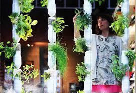 Design Your Own Garden App Magnificent Britta Riley A Garden In My Apartment TED Talk