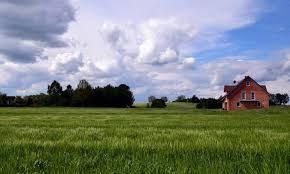 green grass blue sky. Beautiful Green Landscape Agriculture Blue Sky Cloud Green Grass Field Summer  Countryside And Green Grass Blue Sky