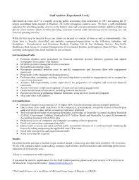 External Auditor Resume Senior External Auditor Resume Inspirational Senior It Auditor 17