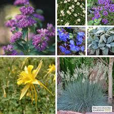 serene shade garden pre planned gardens high country