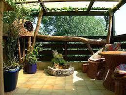 a cat safe outdoor flower area