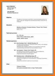 Sample Curriculum Vitae For Job Application Example Of Cv For Job Application Cv Job Application Example