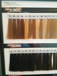 Goldwell Hair Color Chart Goldwell Topchic Color Swatches Sbiroregon Org