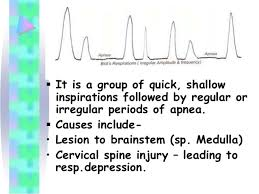 Types Of Breathing Patterns Breathing Patterns