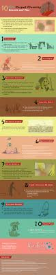 diy carpet cleaner. DIY-Carpet-Cleaning-Infographic Diy Carpet Cleaner I