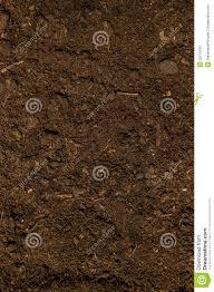 dark dirt texture seamless. Dark Dirt Texture Seamless T