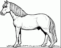 Small Picture Spirit Horse Coloring Pages Printable Coloring Pages