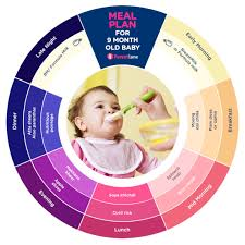 Indian Baby Food Chart By Age Indian Nutritious Food For 9 Months Old Baby Food Chart