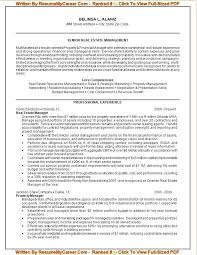 It Resume Writing Services Executive Resume Writing Service Package