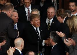 Image result for trump congress address pics